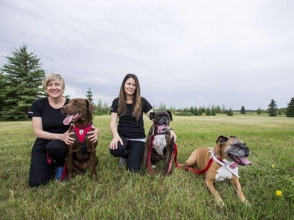 Animal Assisted Therapy Team: Dr. Colleen Dell and Dr. Darlene Chalmers