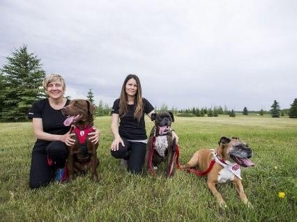 Équipe de zoothérapie : Colleen Dell et Darlene Chalmers