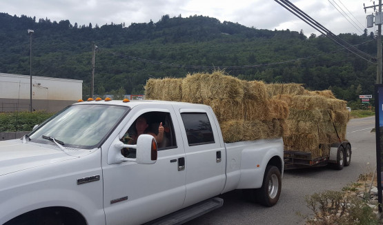 Two of the loads of hay being delivered to farmers in Barriere, B.C.
