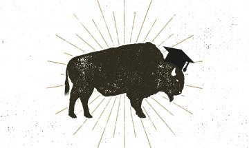 Buffalo wearing an academic hat.